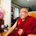 亡命したチベット高僧「アジャ・リンポチェ」が遥々日本へ来る理由